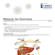 Overview of malaria elimination
